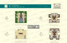 别墅C户型:294平米